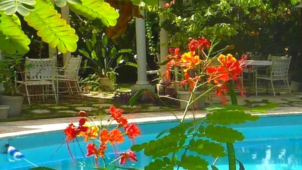 Swimming Pool in The Orchard Garden Hotel